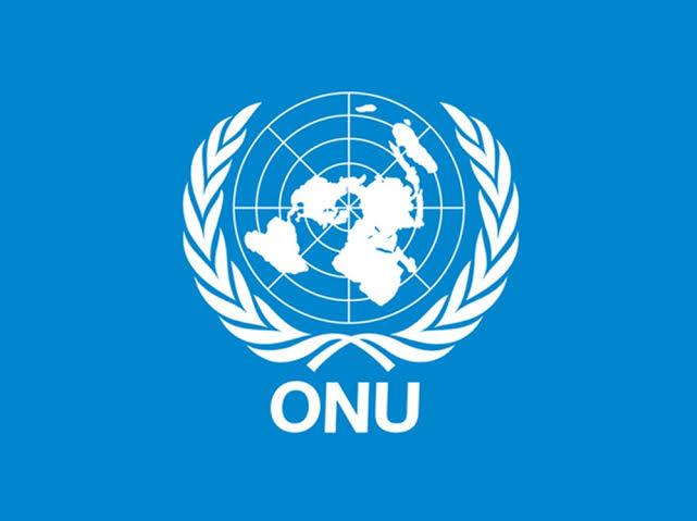 Défense et Sécurité-ONU : Le mandat de la Monusco une fois de plus prolongé.