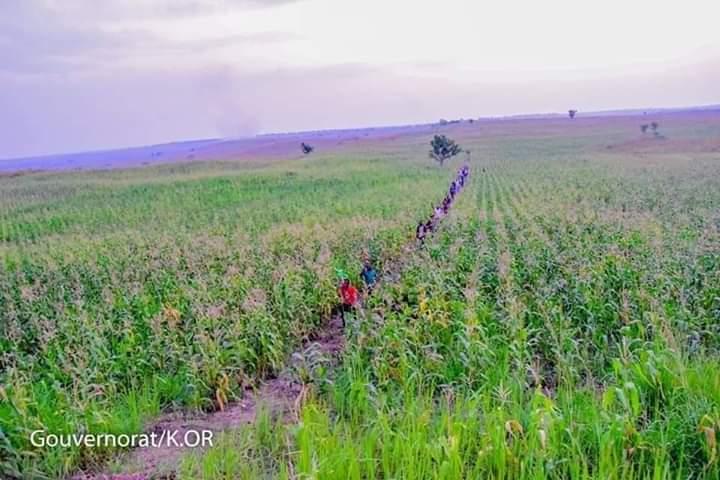 Kasaï Oriental : Agriculture priorité des priorités, Félix Tshisekedi fait un don de matériels à la province.