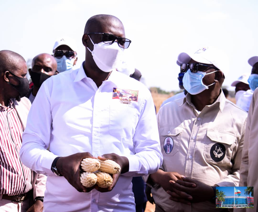 """Haut-Katanga/ Agriculture : L'opération """"Indépendance alimentaire"""" du gouvernement provincial, une première bien réussie."""