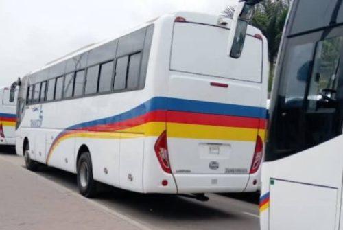 Kinshasa/Transport en commun: Arrivée des nouveaux bus de Transco
